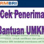 Daftar Penerima Dan Cara Cek BLT UMKM di BRI,BNI dan Bank Aceh Syariah RP1,2 Juta 2021