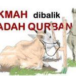 Hukum Melaksanakan Ibadah Qurban