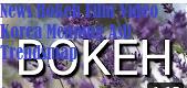 News Bokeh Film Video Korea Meaning Asli Trendsmap