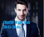 Cerita Novel Charlie Wade bab 3645-3646 Rencana Bisnis Masa Depan